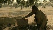 Image who-killed-sara-441-backdrop.jpg